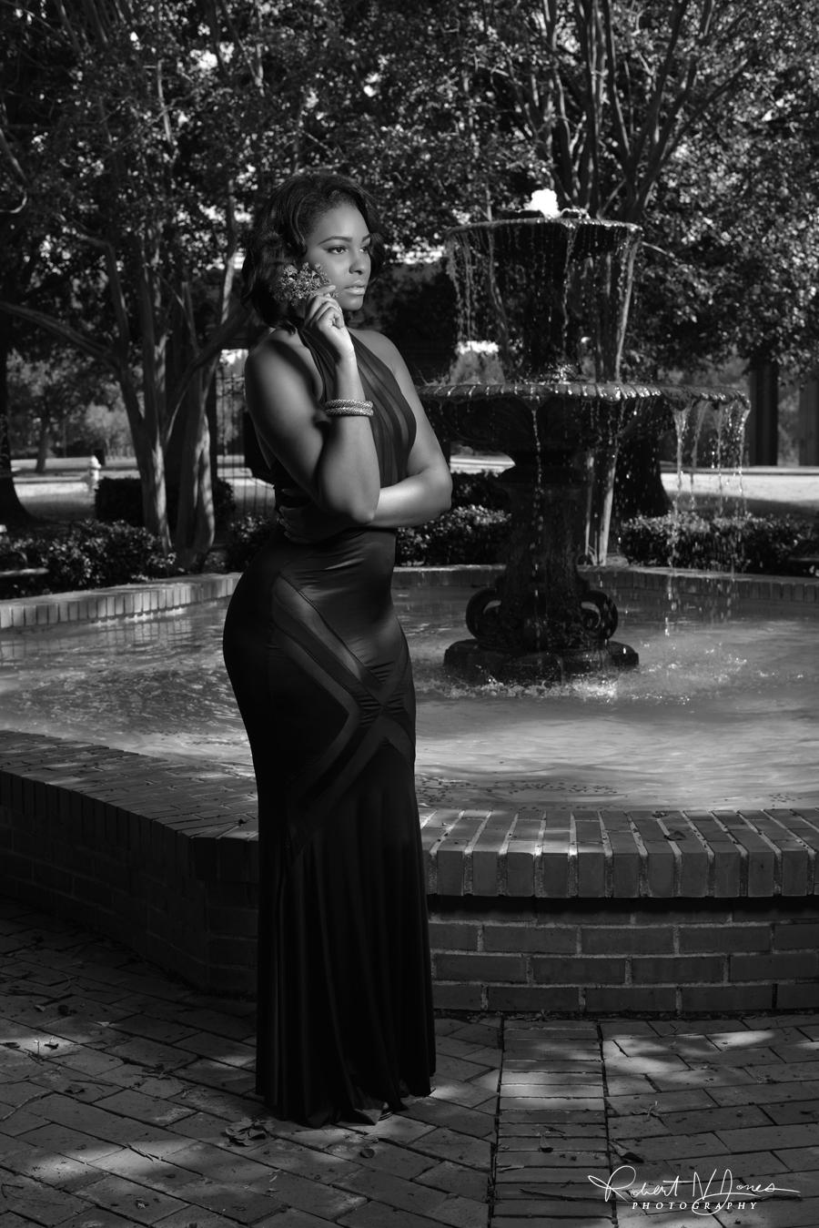 Vanessa Fountain 1