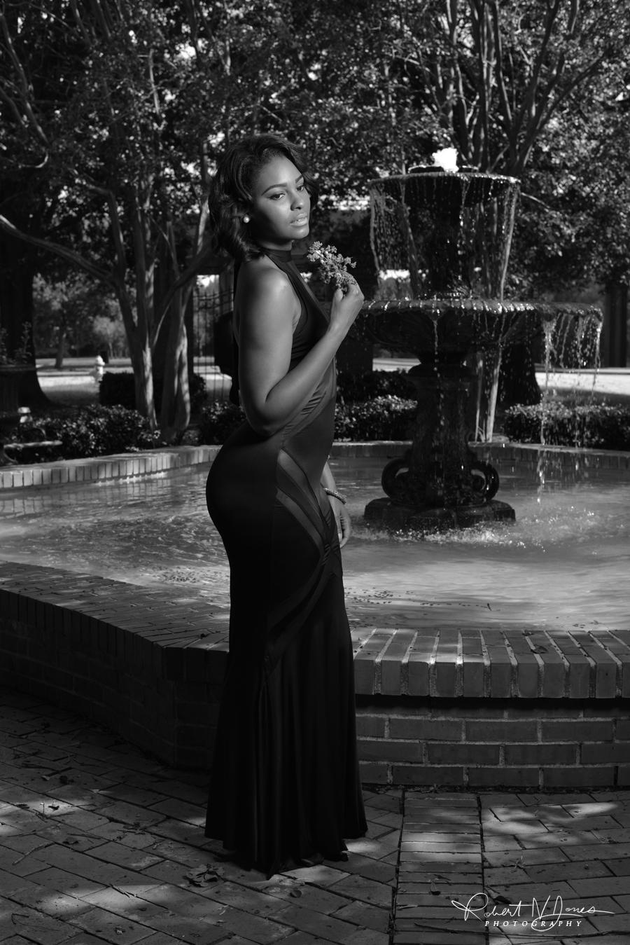 Vanessa Fountain 3