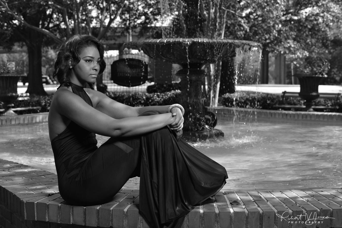 Vanessa Fountain 5