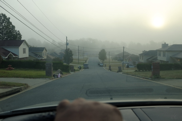 Driving Through The Fog 1