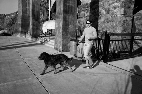 dog walker 5