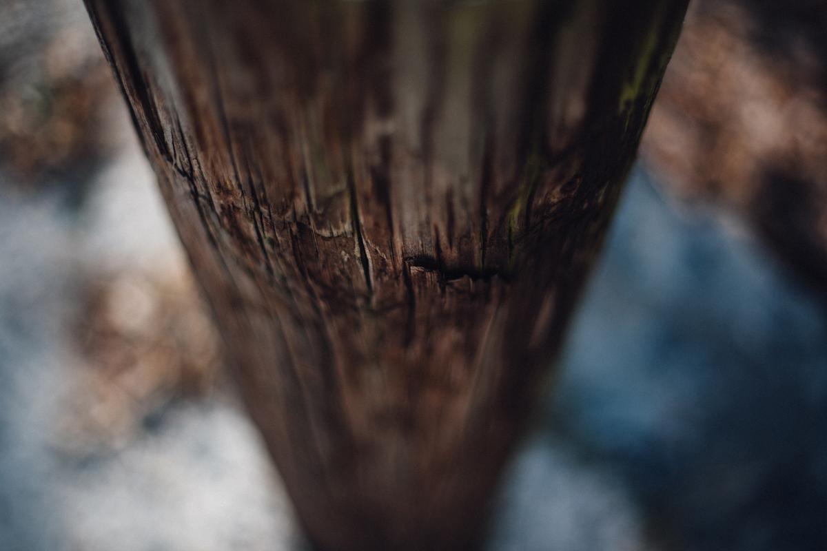 Wood Focus 1 blog