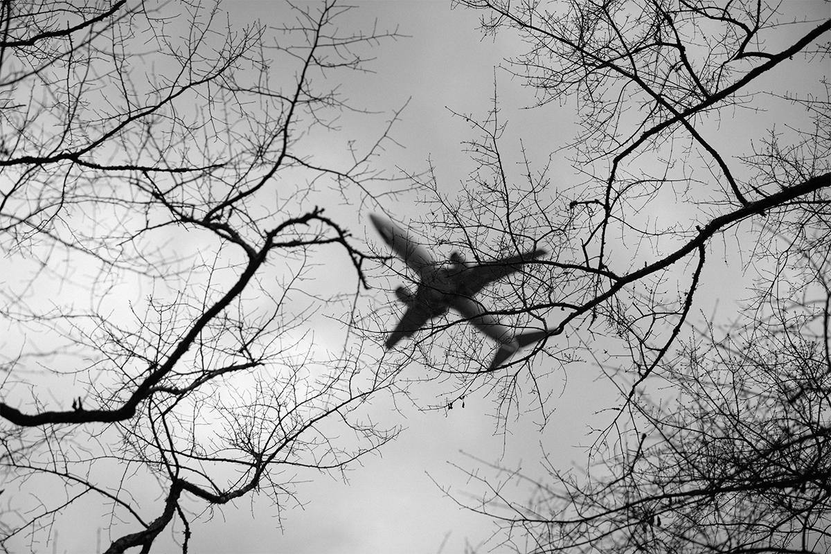 Flying Over The Park 1b blog